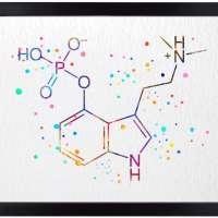 Psilocybin Molecule Art