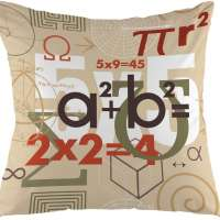 Math Decorative Throw Pillow Cover
