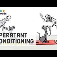 Skinner's Operant Conditioning: Rewards & Punishments