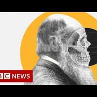 Theory of Evolution: How did Darwin come up with it?