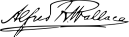 Alfred Russel Wallace Signature