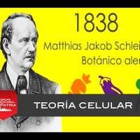 Teoría celular │biología