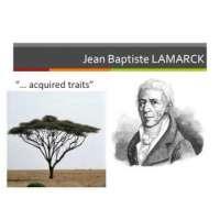 Evolution Theory L1 Lamarck