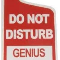Do Not Disturb...Genius At Work Tin Door Knob