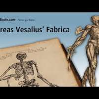 Andreas Vesalius' De Humani Corporis Fabrica