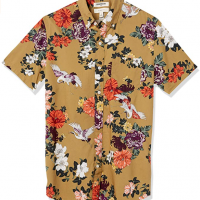 Short-Sleeve Printed Poplin Shirt