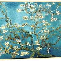 Canvas Prints of Van Gogh