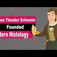 Theodor Schwann Biography | Animated Video