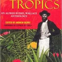 Infinite Tropics