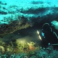 The Undersea World of Jacques Cousteau - The Sleeping Sharks of Yucatan